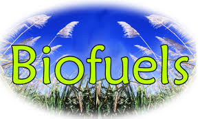 Biofuels and the sustainability debate